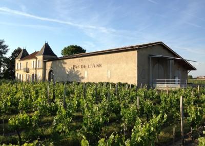 Château Pas de l'Ane