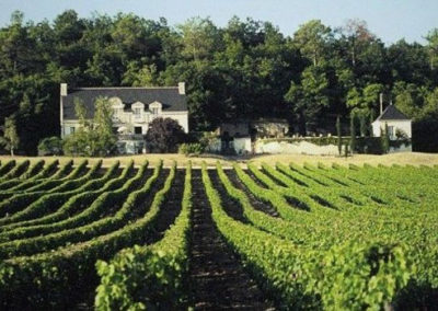 Domaine Beausejour